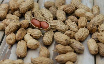 rauwe noten eten